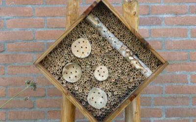 Stem op het Buurt-Bijen-Lint