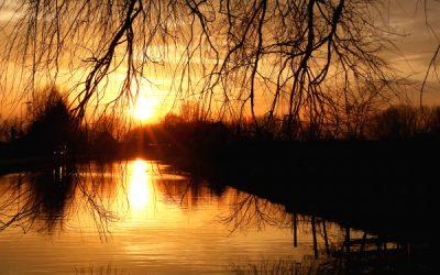 Ook in Zoetermeer verandert het klimaat